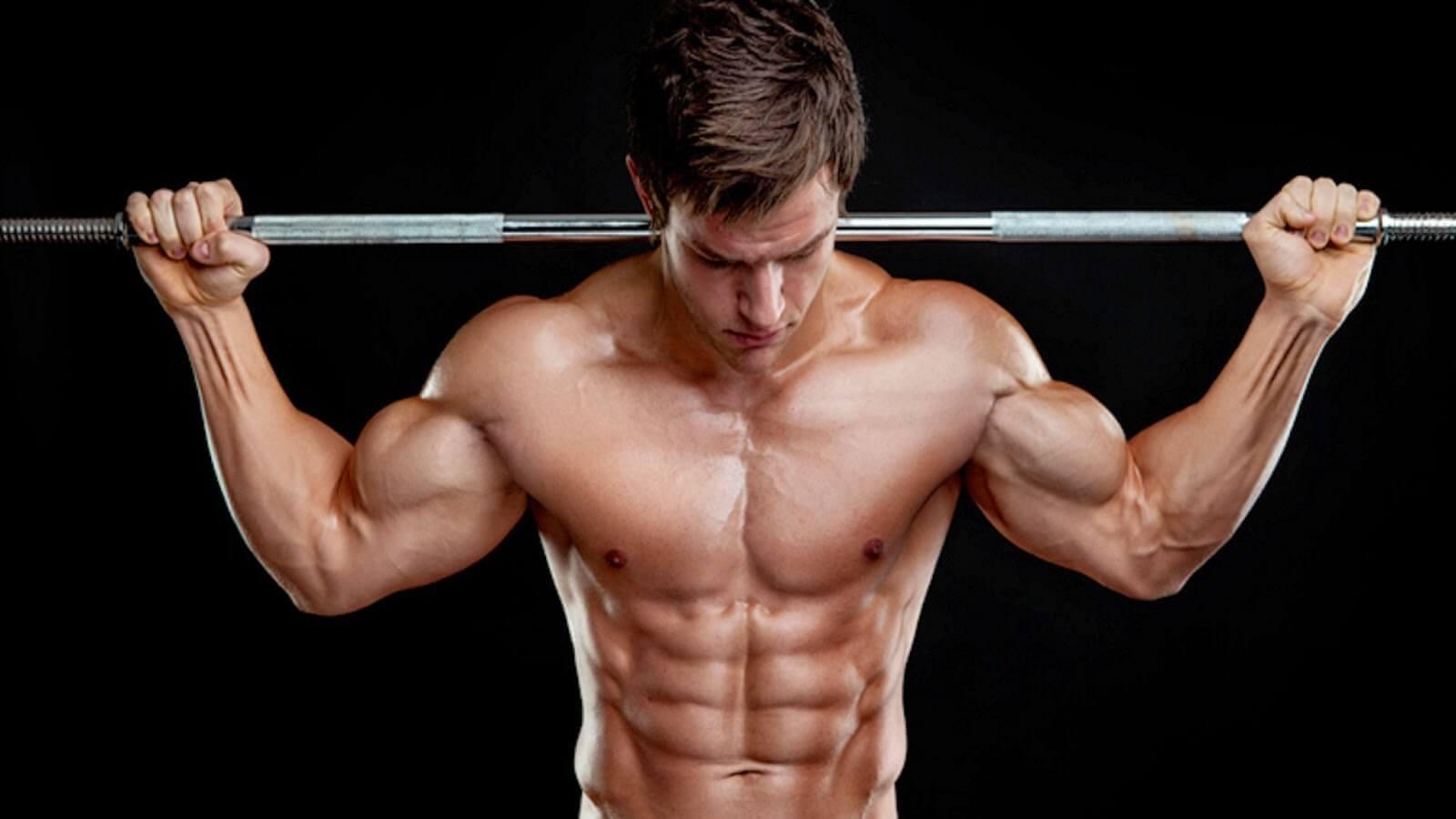 A Hipertrofia Muscular