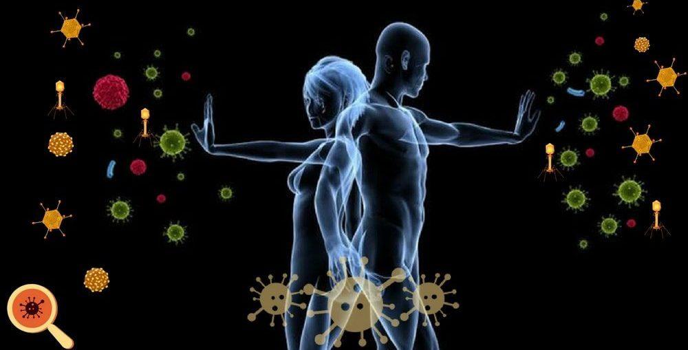 Como podemos fortalecer nosso sistema imunológico?